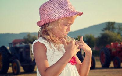 Praiset: e-commerce per abbigliamento bimbi in Orto Creativo
