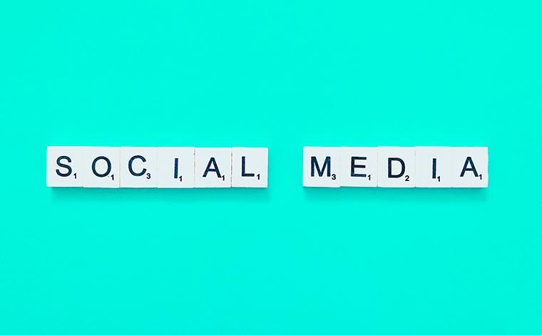Social media marketing - Gestione profili social - Campagne social media - Orto Creativo